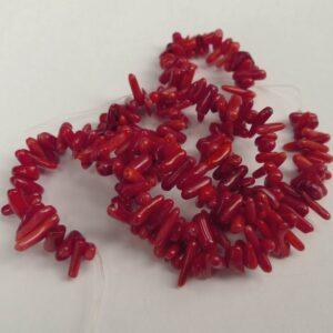 Røde koral splitter